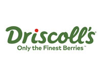 Driscoll's Berries Available at Hollywood Markets
